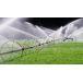 Livestock and Irrigation